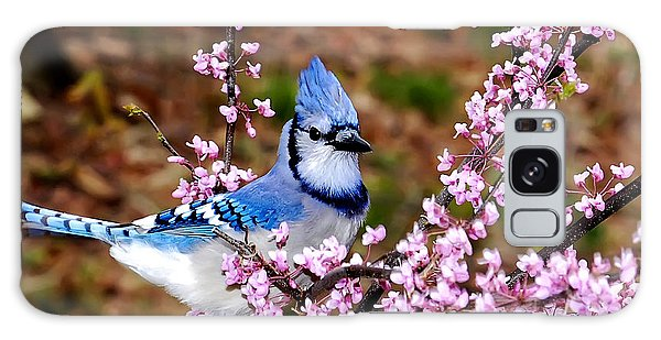 Blue Jay In The Pink Galaxy Case by Randall Branham