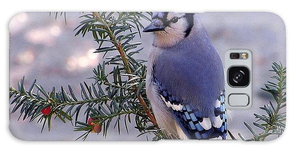 Blue Jay - Morning Visitor  Galaxy Case by Susan  Dimitrakopoulos