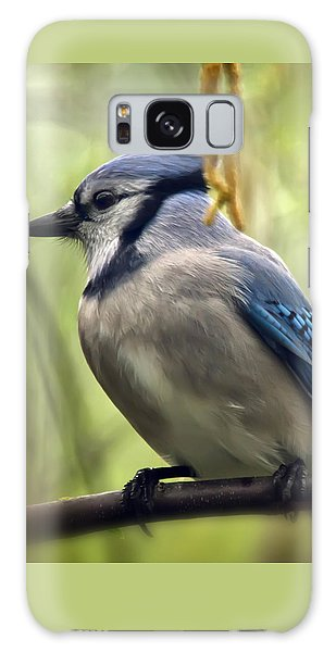 Blue Jay On A Misty Spring Day - Square Format Galaxy Case
