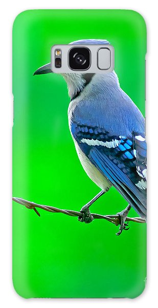 Blue Jay On The Fence Galaxy Case by Robert Frederick