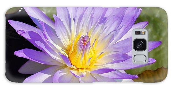 Blue Lily Galaxy Case