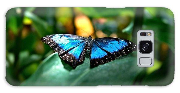 Blue Lit Butterfly Galaxy Case