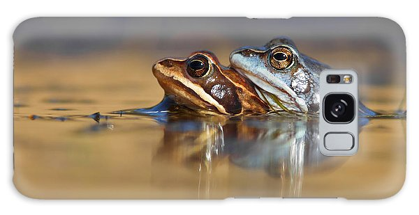 Blue Love ... Mating Moor Frogs  Galaxy Case