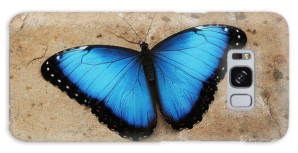 Blue Morpho #2 Galaxy Case