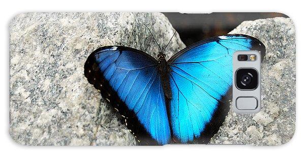 Blue Morpho Butterfly Galaxy Case