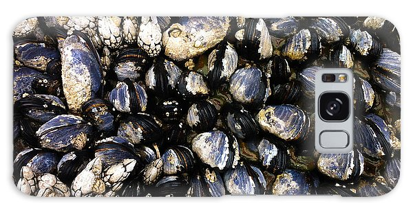Blue Mussels Galaxy Case