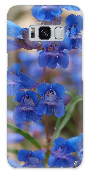 Blue Penstemon Galaxy Case