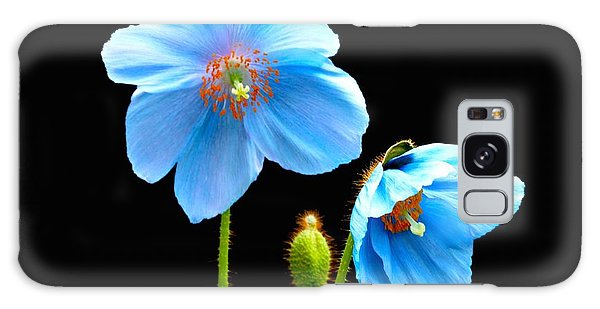 Blue Poppy Flowers # 4 Galaxy Case