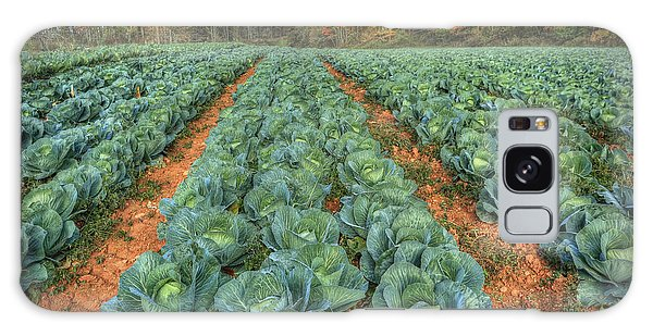 Blue Ridge Cabbage Patch Galaxy Case by Jaki Miller