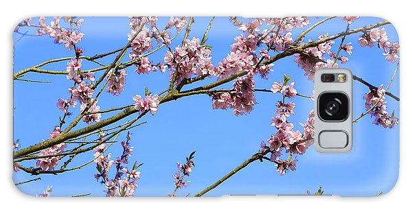Blue Sky And Pink Blossom. Galaxy Case