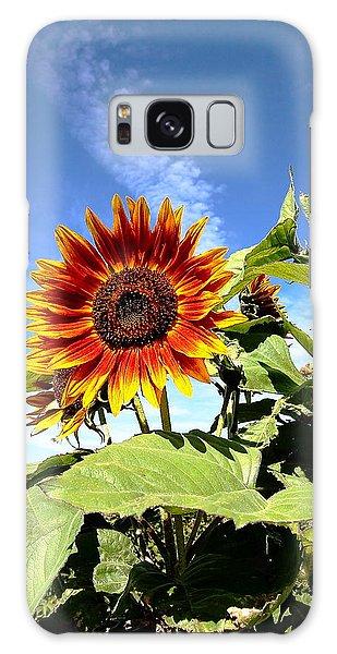 Blue Sky And Sun Flower Galaxy Case