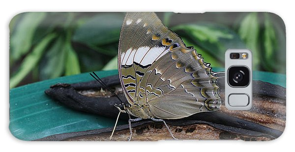 Blue-spotted Charaxes Butterfly Galaxy Case