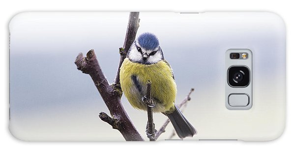 Titmouse Galaxy Case - Blue Tit by Tim Gainey