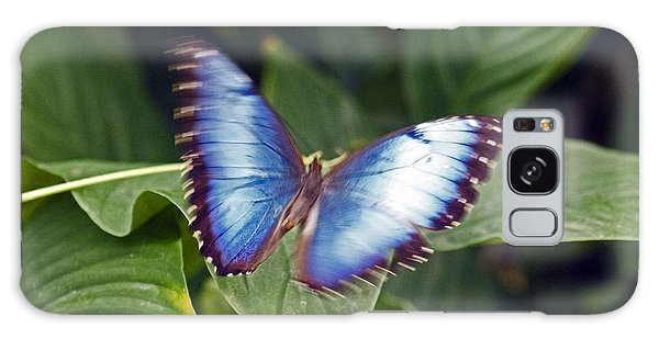 Blue Wings Galaxy Case
