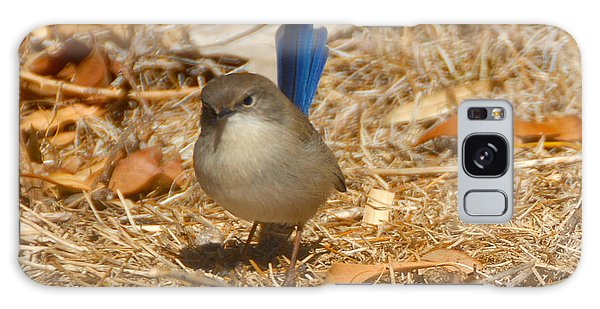 Blue Wren Galaxy Case