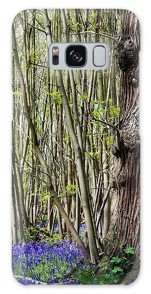 Bluebell Galaxy Case - Bluebell Woodland by Mark Rogan
