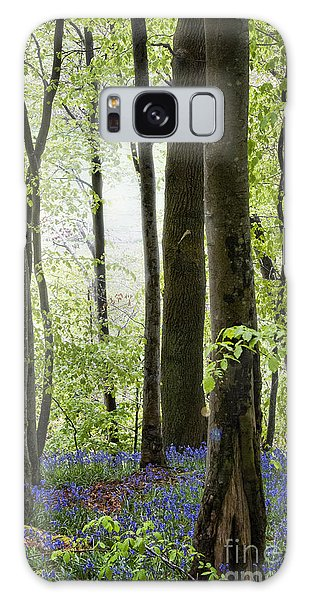 Bluebell Galaxy Case - Bluebells In The Woods by Juli Scalzi