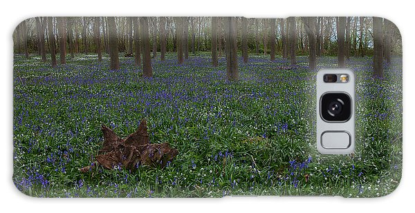 Bluebells Oxey Wood. Galaxy Case
