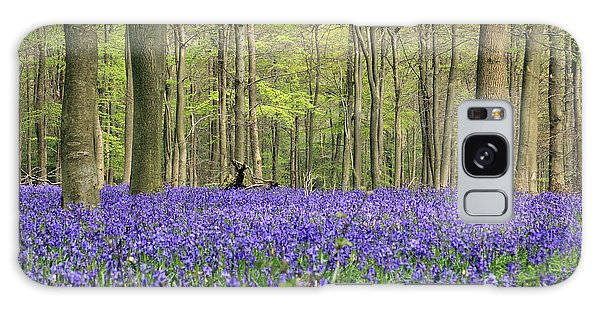 Bluebells Surrey England Uk Galaxy Case