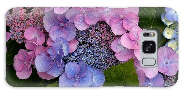 Blueberries And Cream Galaxy Case by Living Color Photography Lorraine Lynch