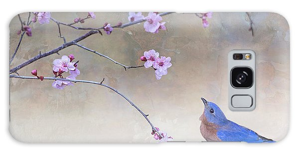 Bluebird And Plum Blossoms Galaxy Case