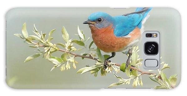 Bluebird Floral Galaxy Case