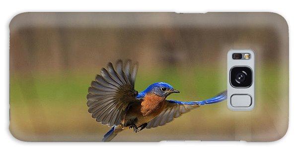 Bluebird Galaxy Case - Bluebird In Flight by Everet Regal