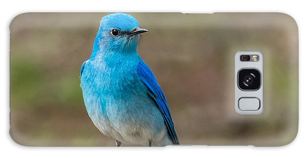 Bluebird In Yellowstone Spring Galaxy Case