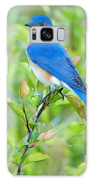 Bird Galaxy Case - Bluebird Joy by William Jobes