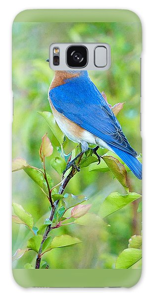 Bluebird Joy Galaxy Case