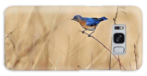 Bluebird Meadow Galaxy Case