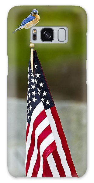 Bluebird Perched On American Flag Galaxy Case
