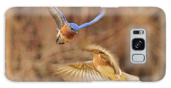 Eastern Bluebird Galaxy Case - Bluebirds Aerial Art by Everet Regal