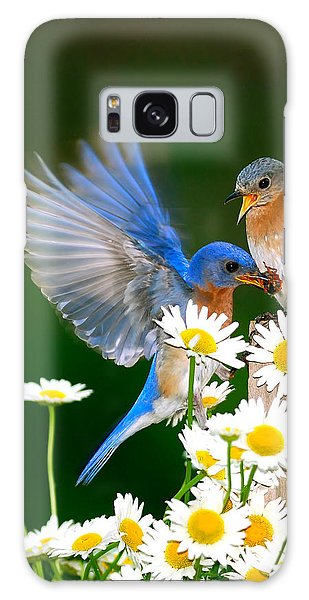 Bluebirds And Daisies Galaxy Case by Randall Branham