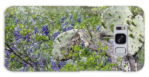 Bluebonnets And Cactus Galaxy Case by Ron Grafe