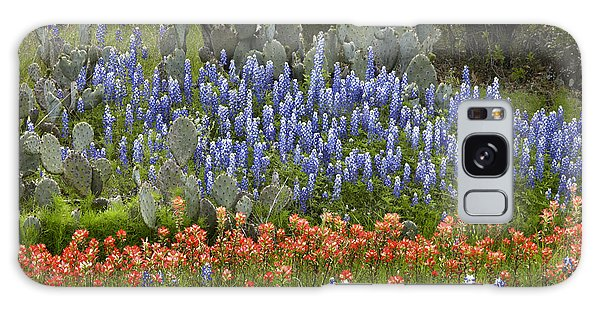 Galaxy Case featuring the photograph Bluebonnets Paintbrush And Prickly Pear by Tim Fitzharris