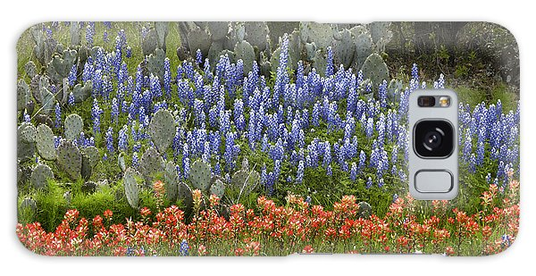 Bluebonnets Paintbrush And Prickly Pear Galaxy Case