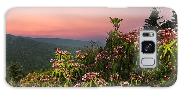 Blueridge Parkway Mountain Laurel Galaxy Case by Randall Branham