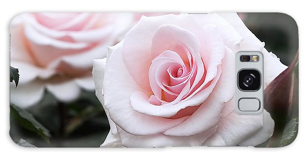 Blush Pink Roses Galaxy Case