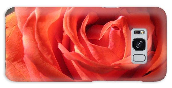 Blushing Orange Rose 1 Galaxy Case