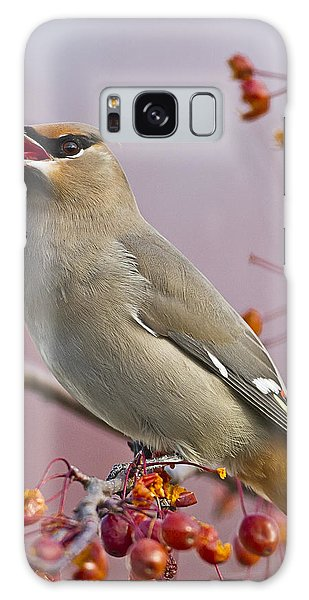 Bohemian Waxwing With Fruit Galaxy Case