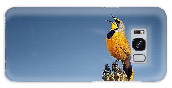 Animals Galaxy Case - Bokmakierie Bird Calling by Johan Swanepoel