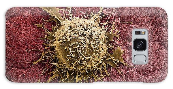 Bone Marrow Stem Cell On Cartilage Galaxy Case