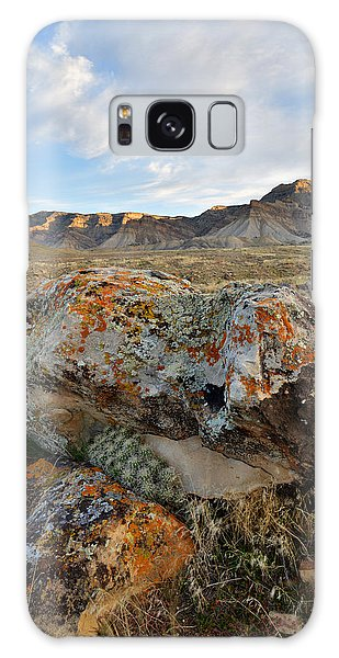 Bookcliffs 145 Galaxy Case by Ray Mathis