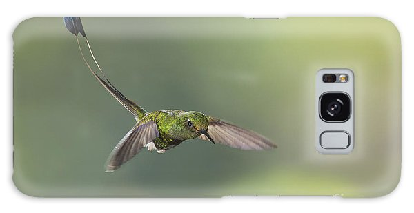 Booted Racket-tail Hummingbird Galaxy Case