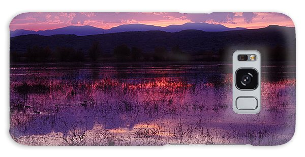 Bosque Sunset - Purple Galaxy Case