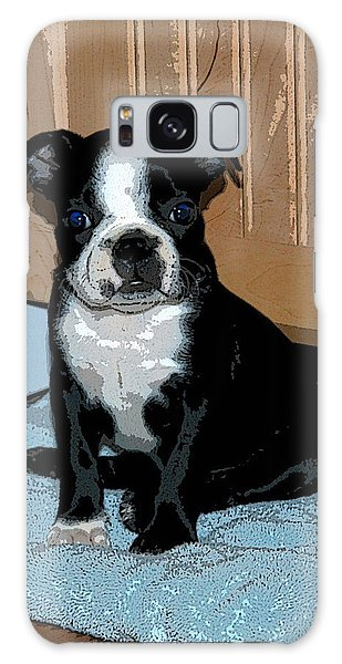 Boston Terrier Art02 Galaxy Case