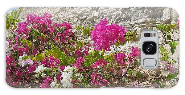 Bougainvillea At The Dead Sea Galaxy Case by Esther Newman-Cohen
