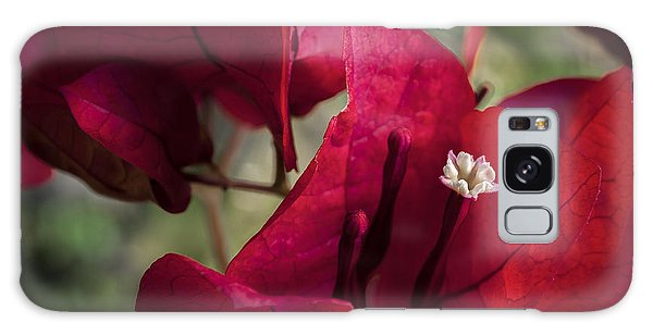 Galaxy Case featuring the photograph Bougainvillea by Steven Sparks