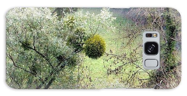 Mistletoe Ball Galaxy Case